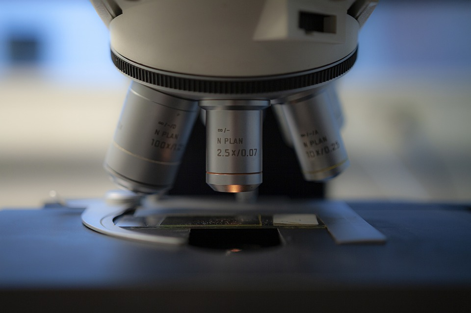 Amneal Pharmaceuticals AMRX Stock News